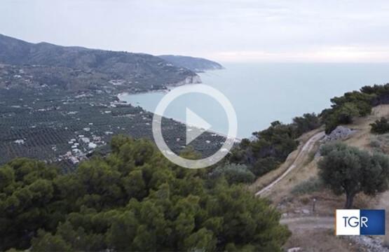 Monte Saraceno Tgr Rai Puglia