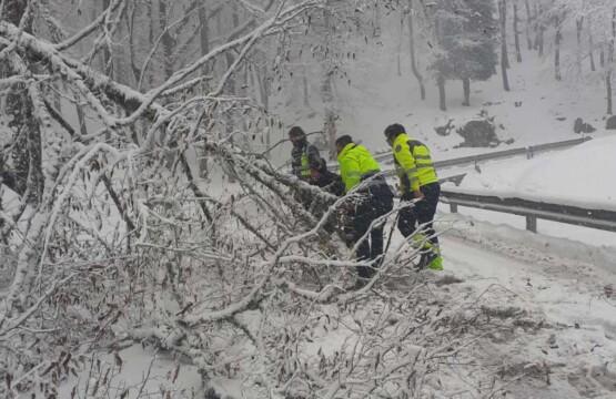 """Neve e ghiaccio a Mattinata, l'impegno dei """"Falchi"""""""